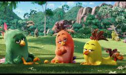 Angry Birds Film: Fragman (Türkçe Dublajlı)