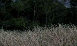 Koca Dünya: Fragman