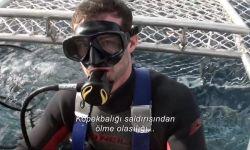 Açık Deniz 3: Kafes Dalışı: Fragman (Türkçe Altyazılı)