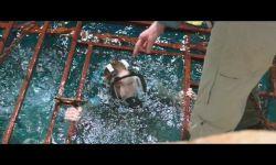 Denizde Dehşet: Fragman (Orijinal)