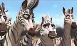 Cesur Zebra: Fragman (Orijinal)