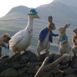 Peter Rabbit: Kaçak Tavşan Filmi Fotoğrafları
