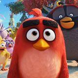 Angry Birds Filmi 2 Filmi Fotoğrafları