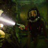 47 Metre Derinde: Kafes Filmi Fotoğrafları