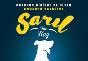 Ayla'nın senaristi Yiğit Güralp, yeni filmi Sarıl'da Kuyu köpeğin hikâyesini anlatacak