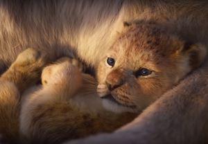 19 Temmuz'da vizyona girecek olan The Lion King'den teaser yayınlandı