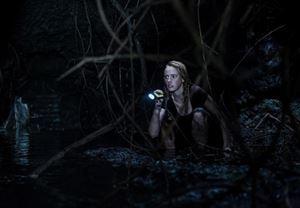 Box Office Türkiye Özel: 12 Temmuz'da vizyona girecek olan The Crawl'u ön gösterimde izleme fırsatı!