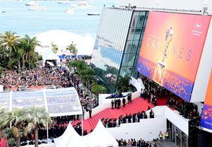Cannes Film Festivali bu yıl düzenlenmeyecek, programdan bazı filmler Cannes 2020 etiketiyle diğer festivallerde gösterilecek