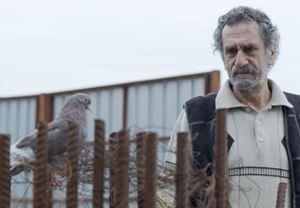 Ödüllü film Babamın Kanatları'ndan fragman yayınlandı