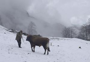 Kalandar Soğuğu, 10. Asya Pasifik Film Ödülleri'nden En İyi Film dâhil üç ödülle birden döndü