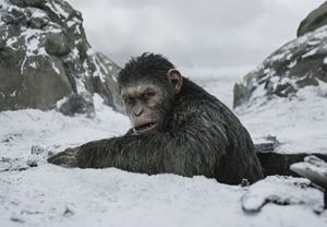 Box Office Türkiye: Maymunlar Cehennemi: Savaş, hafta sonunun gişe lideri!