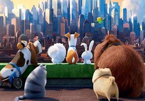 ABD Box Office: Evcil Hayvanların Gizli Yaşamı Amerika'da Rekorla Vizyona Girdi!