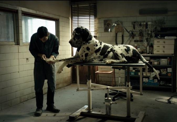 Gomorra ve Tale of Tales'in yönetmeni Matteo Garrone'nin Cannes'da yarışacak filmi Dogman'den fragman!