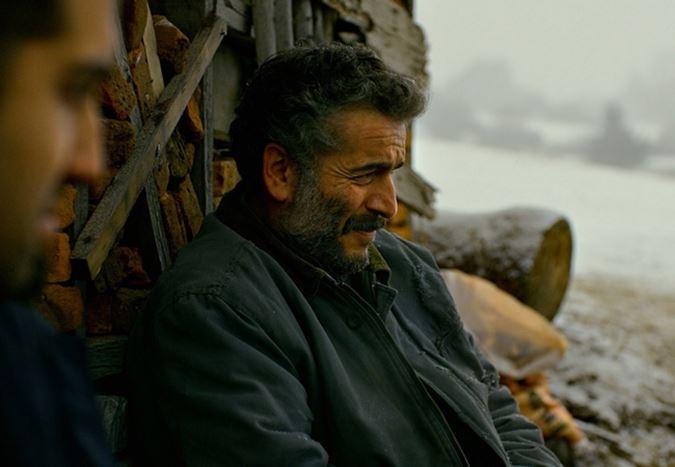2019 Oscar Ödülleri'nde Yabancı Dilde En İyi Film aday adayları