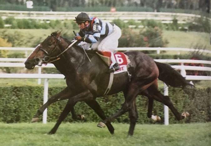 Efsanevi jokey Halis Karataş ile unutulmaz yarış atı Bold Pilot'ın hikâyesi sinemaya uyarlanıyor