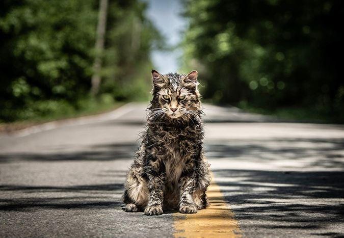 Stephen King'in ünlü eserinden uyarlanan Pet Sematary'den fragman yayınlandı