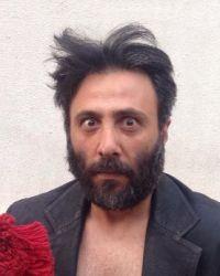 Aziz Kedi