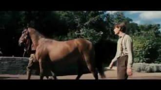 Savaş Atı Filmi Fragman