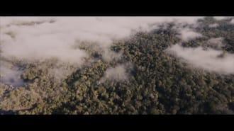 Ayı Paddington Filmi Teaser Fragman (Türkçe Dublajlı)