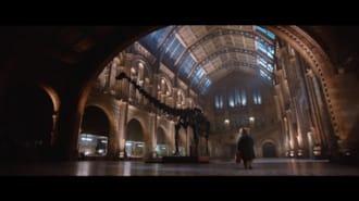 Ayı Paddington Filmi Fragman (Türkçe Dublajlı)