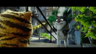 Kötü Kedi Şerafettin Filmi Fragman