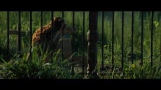 Muhteşem Yedili Filmi İlk Fragman (Türkçe Altyazılı)