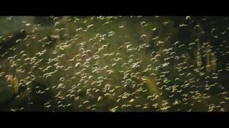 Kong: Kafatası Adası Filmi Fragman (Türkçe Altyazılı)