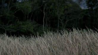 Koca Dünya Filmi Fragman