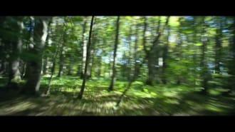 Küçük Cadı Filmi Fragman (Türkçe Dublajlı)