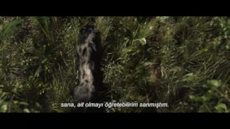 Mogli: Orman Çocuğu Filmi Fragman (Türkçe Altyazılı)